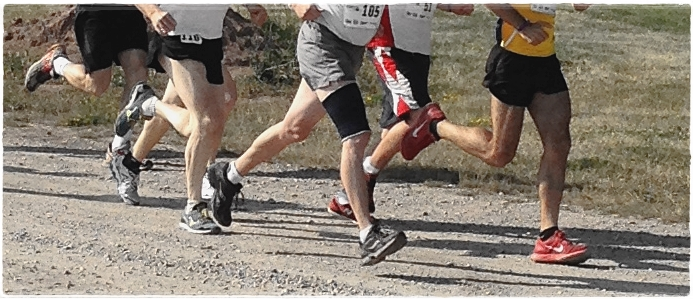 Humans hardwired to run forefoot, not rearfoot