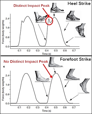 Do Heel Strike Runners Injure More Than Forefoot Runners?