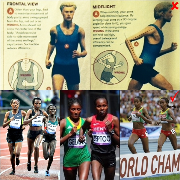 arm swing comparion between ethiopian elite female distance runners and non-African elite female distance runners