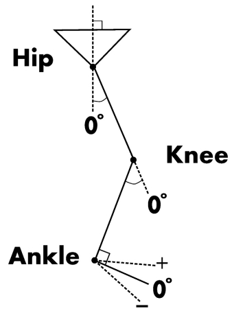 How barefoot and shod condition affect lower leg kinematics