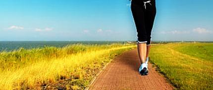 Impact Transients in Heel Strike Running Causes Injury