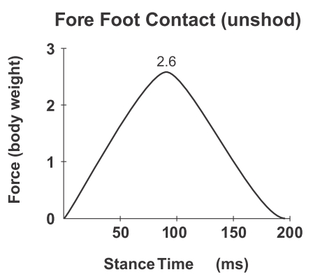 No Impact Peaks in Forefoot Running