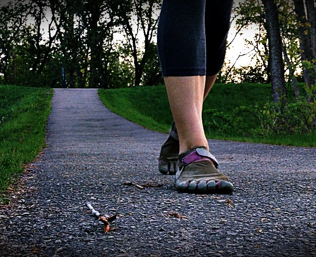 Barefoot Like Running Shoes Improves Rotational Compliance of the Foot