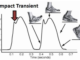 Impact Differences Between Forefoot Running and Heel Striking