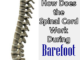 Nervous System Spinal Cord