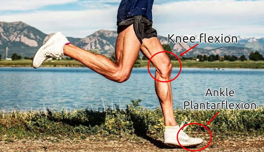 Why Forefoot Running is Better for the Knees than Heel Strike Running